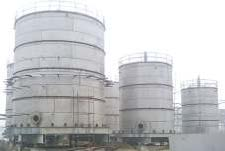 GUJARAT NARMADA VALLEY FERTILIZER CO. LTD.